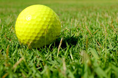 желтый цвет гольфа шарика стоковые фото