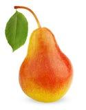 желтый цвет груши листьев плодоовощ красный зрелый Стоковые Фото
