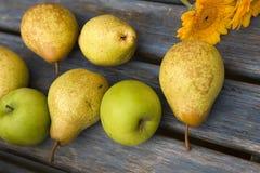 желтый цвет груши цветка яблока Стоковое Изображение RF