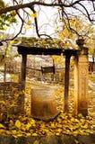 желтый цвет добра времени листьев осени старый каменный Стоковые Изображения RF