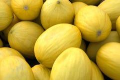 желтый цвет дыней Стоковое фото RF