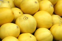 желтый цвет дыни Стоковые Фото