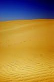 желтый цвет дюны Стоковые Изображения RF