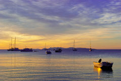 желтый цвет захода солнца лиловый Стоковые Фотографии RF