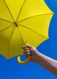 желтый цвет зонтика стоковая фотография