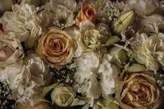 Желтый цвет и крупный план белых роз стоковые фотографии rf