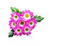 желтый цвет картины сердца цветков падения бабочки флористический Букет розовых цветков на белом copyspace взгляд сверху предпосы Стоковая Фотография RF