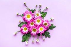 желтый цвет картины сердца цветков падения бабочки флористический Букет розовых цветков на фиолетовом copyspace взгляд сверху пре Стоковое Фото