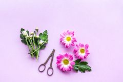 желтый цвет картины сердца цветков падения бабочки флористический Сделайте концепцию букета Пинк цветет около sciccors на фиолето Стоковая Фотография