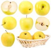 желтый цвет комплекта абстрактных яблок свежий Стоковое Фото