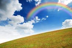 желтый цвет ландшафта травы Стоковое Изображение RF