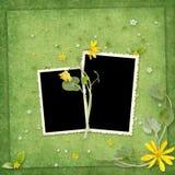 желтый цвет лета рамки цветков Стоковые Изображения