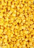 желтый цвет макроса мозоли Стоковая Фотография