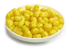 желтый цвет мозоли Стоковые Изображения