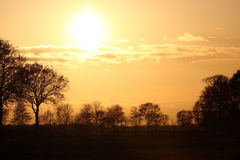 желтый цвет неба meddow Стоковое фото RF