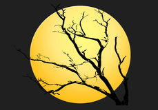 желтый цвет ночи луны halloween предпосылки Стоковые Фотографии RF