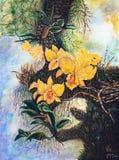 желтый цвет орхидей пущи бесплатная иллюстрация