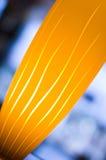 желтый цвет освещенный светильником Стоковое Изображение