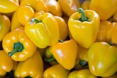 желтый цвет перцев Стоковое фото RF