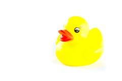 желтый цвет пластмассы утки Стоковая Фотография RF