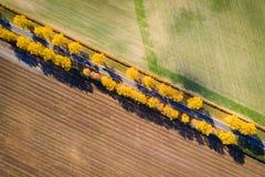 желтый цвет погоды валов солнца дороги осени зеленый Взгляд сверху предпосылка больше моего перемещения портфолио Фон транспорта  стоковое изображение