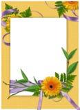 желтый цвет рамки цветка предпосылки Стоковое Изображение