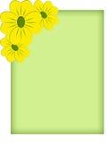 желтый цвет рамки цветка Стоковое Изображение