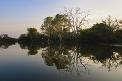 желтый цвет реки billabong Стоковые Фото