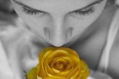 желтый цвет розы девушки стоковые изображения rf