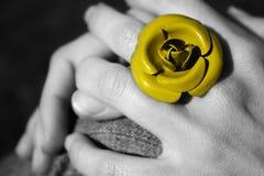 желтый цвет розы кольца Стоковая Фотография