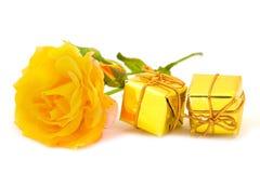 желтый цвет розы подарков Стоковые Изображения RF