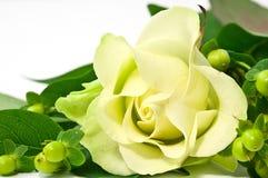 желтый цвет розы украшений Стоковые Изображения RF