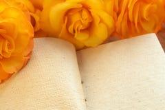желтый цвет роз книги Стоковое Фото