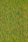 желтый цвет сети кабеля цветастый зеленый Стоковое Изображение