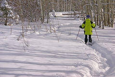 желтый цвет снежка ботинка parka hiker Стоковое Изображение