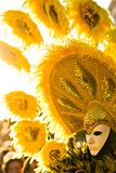 желтый цвет солнца маски стоковая фотография rf