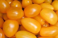 желтый цвет томата предпосылки Стоковое Изображение RF