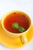 желтый цвет томата супа чашки Стоковая Фотография