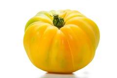 желтый цвет томата heirloom Стоковые Изображения RF