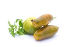 желтый цвет томатов базилика зеленый Стоковые Фото