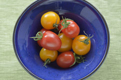 желтый цвет томатов красного цвета вишни Стоковая Фотография RF