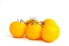 желтый цвет томатов Стоковое Изображение