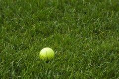 желтый цвет травы гольфа шарика Стоковые Фотографии RF