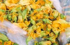 желтый цвет трав Стоковые Фото