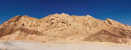 желтый цвет утеса пустыни сценарным выдержанный камнем Стоковая Фотография RF
