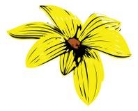 желтый цвет цветка Иллюстрация вектора