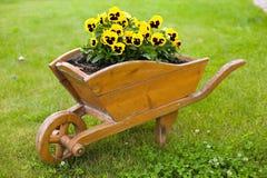 желтый цвет цветков кургана коричневый стоковое фото rf