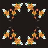 желтый цвет 02 цветков Стоковые Фото