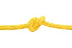 желтый цвет 2 узлов Стоковое Фото