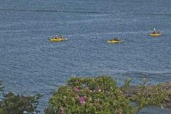 желтый цвет kayaks 3 Стоковые Изображения RF